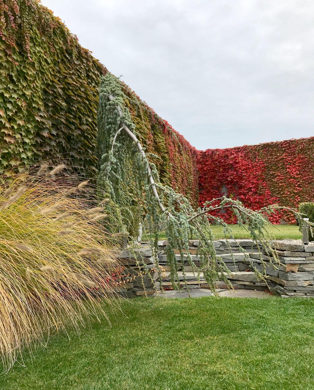 DreamGardens Zahradne Upravy