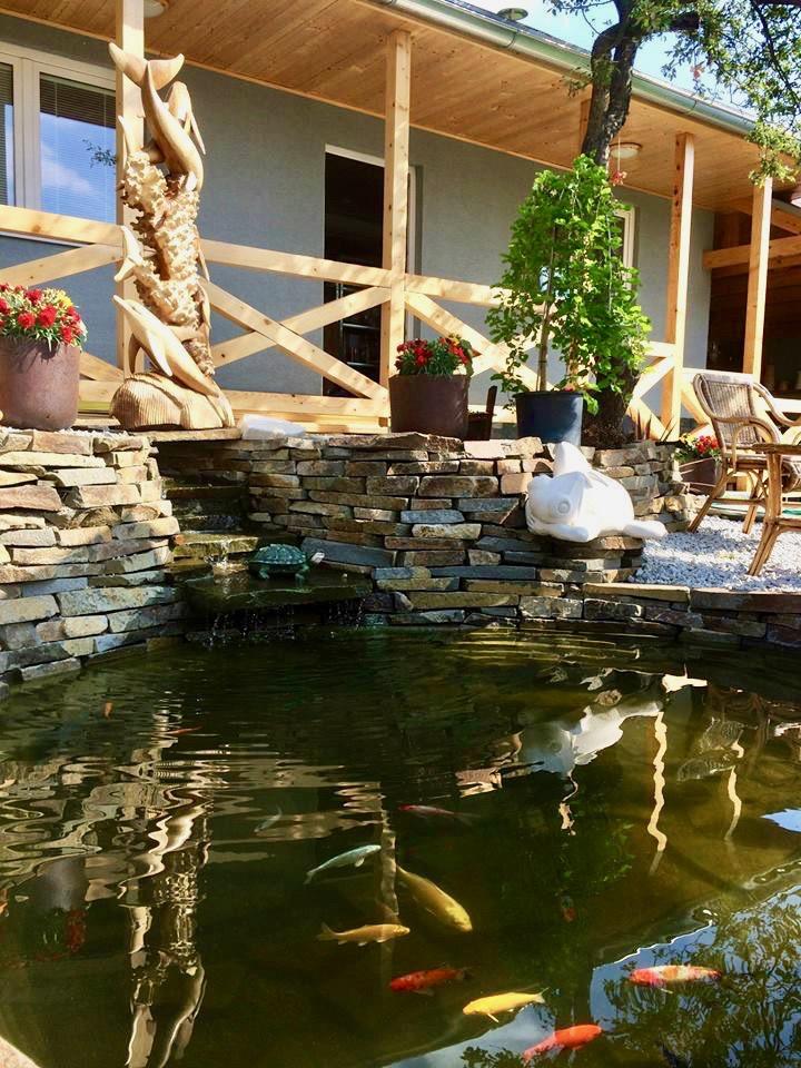 jazierko v zahrade