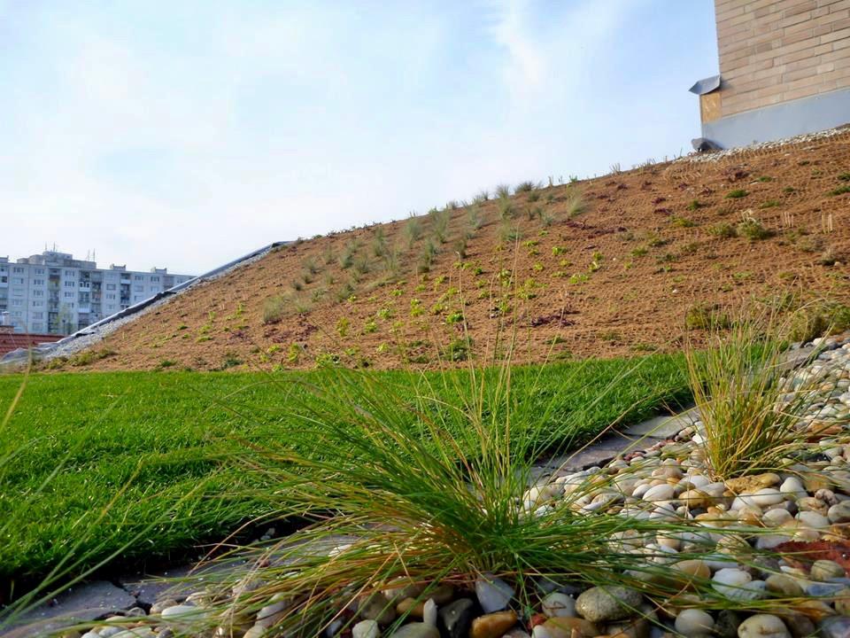 zelena strecha stresna zahrada