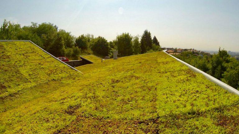 Zelené strechy - Strešné záhrady